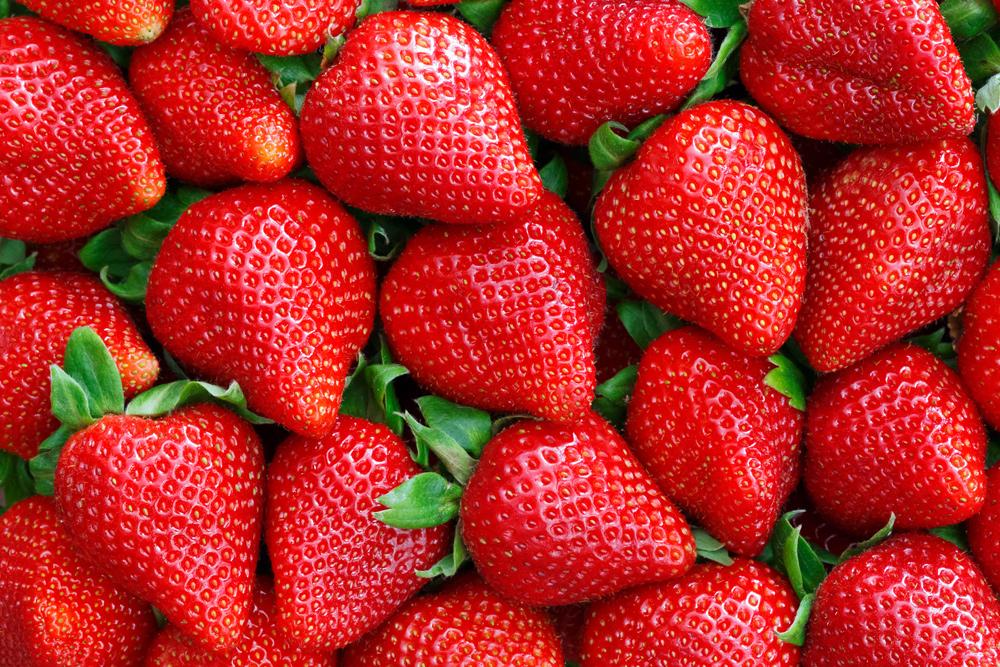 erdbeeren konfiture